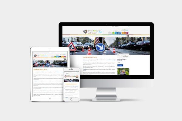 Web Design / Développement